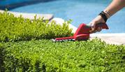 Lawn care and mowing | garden landscaping meadow springs Mandurah